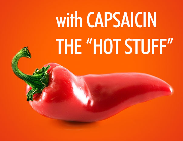 hair loss shampoo with hot pepper extract (capsaicin)